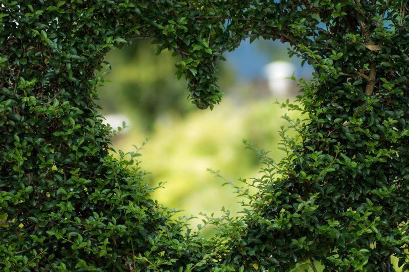 San Valentino e il cuore