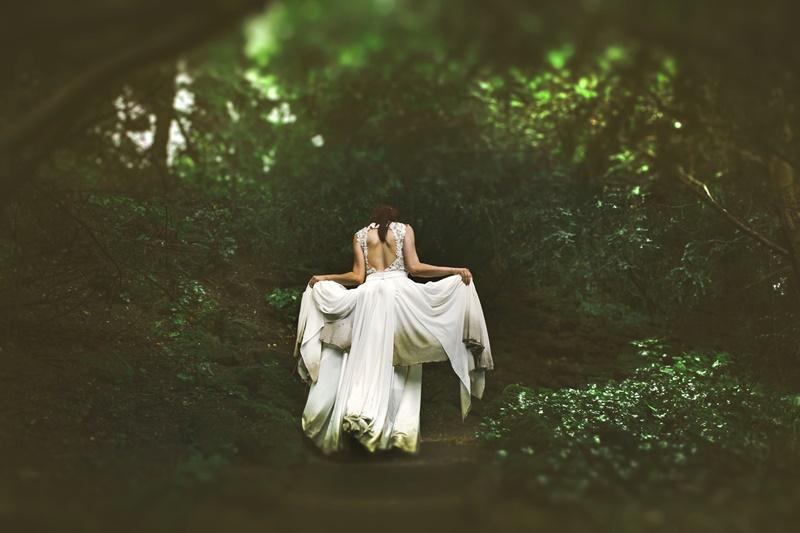 bosco nell'immaginario