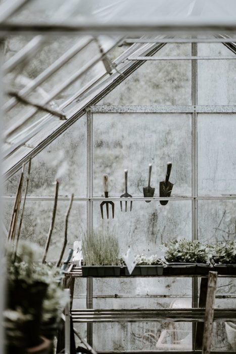 il tuo giardino segreto