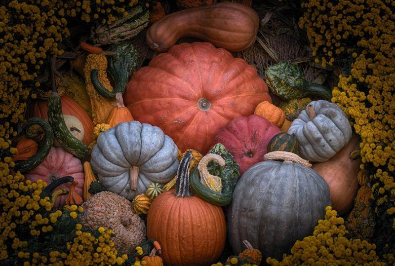 frutti e verdure di stagione