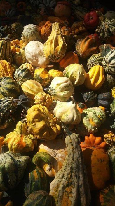 Verdure per Halloween