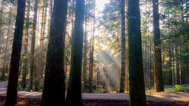riconnettersi con la natura