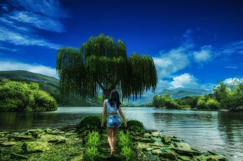 risveglio e ambiente