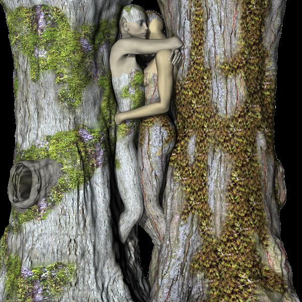 uomo e donna tra gli alberi