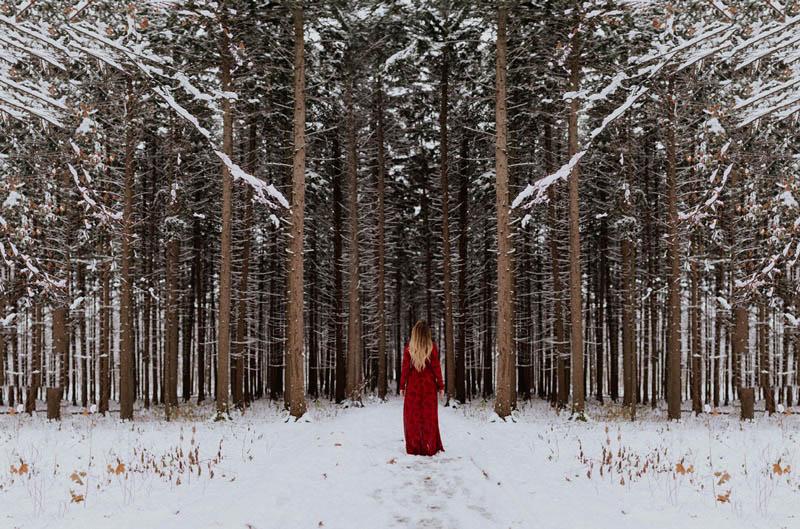 lavoro interiore e foresta