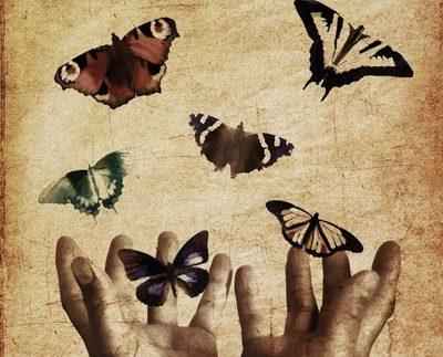 uomini e farfalle