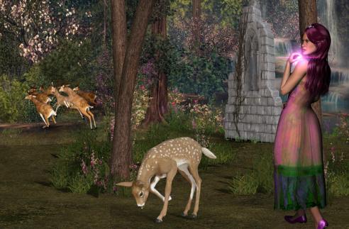 benessere nel bosco