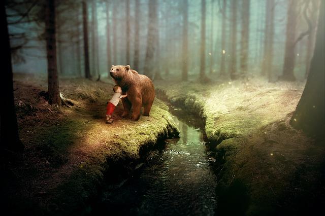 Incontro ravvicinato con orso