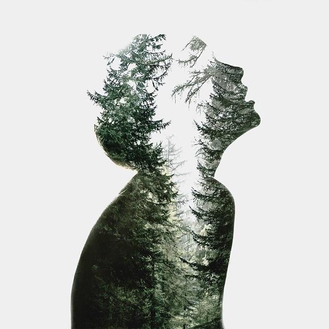noi e il bosco