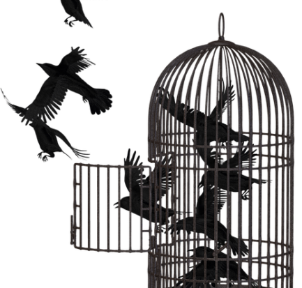 Paura della libertà