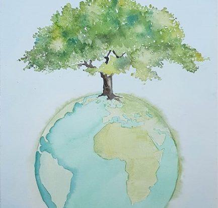 alberi e idee errate