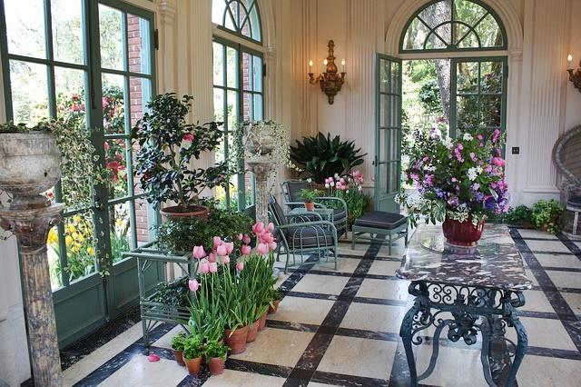 piante da casa