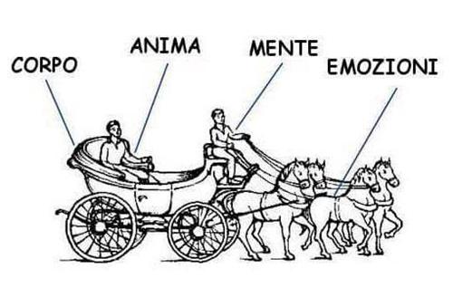 metafora anima